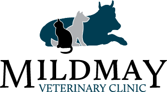 Mildmay Veterinary Clinic